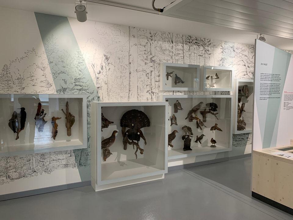 Ganzglas Wand- und Standvitrinen Park der Gärten Ausstellung