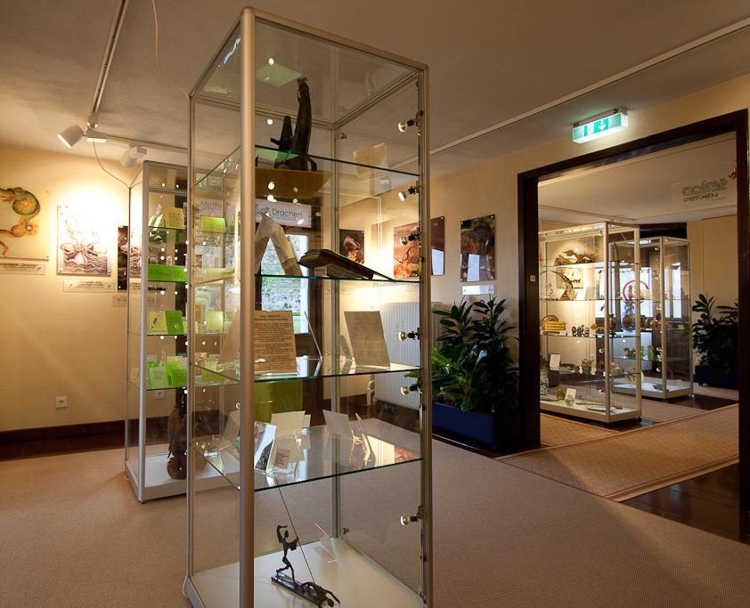 Glas Säulenvitrinen mit integrierter LED-Beleuchtung