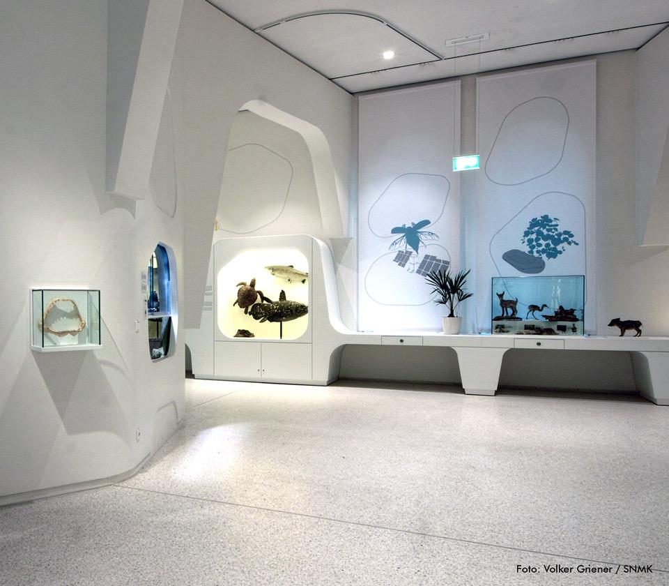 Ganzglas Wand- und Haubenvitrine aus der FANUM-Serie